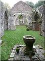 SN0313 : A walk to Slebech Old Church 14 by Humphrey Bolton