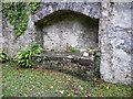 SN0313 : A walk to Slebech Old Church 16 by Humphrey Bolton