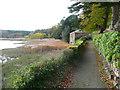 SN0313 : A walk to Slebech Old Church 17 by Humphrey Bolton