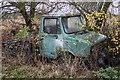 TL3546 : Abandoned Truck by Kim Fyson