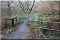 ST1698 : Kissing gate, Coed Ty'n-y-pwll by M J Roscoe