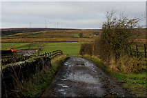 SE0631 : Access Track leading to New Moss Farm by Chris Heaton