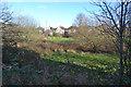 SP3163 : Houses on Tachbrook Road seen across an unnamed brook, Whitnash by Robin Stott