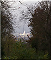 TQ3281 : St Paul's Cathedral : view from Nunhead Cemetery by Jim Osley