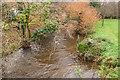 SX0875 : River Camel by Guy Wareham
