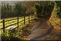TQ5260 : Track to Shoreham by Stephen McKay