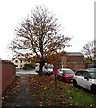 SO8963 : Late autumn 2016 in Hampton Road, Droitwich by Jaggery