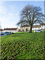 NZ2422 : Grassed area in Heighington by Trevor Littlewood
