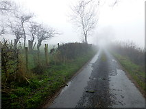 H4965 : Rarone Road, Moylagh / Rarone by Kenneth  Allen