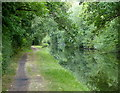 SO8596 : Towpath along the Staffordshire and Worcestershire Canal by Mat Fascione