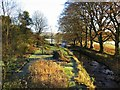 NY5674 : Garden of Old Rectory by Kirk Beck by Andrew Curtis
