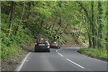SU7818 : B2141, Harting Hill by N Chadwick