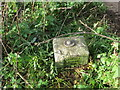 SO3214 : Ordnance Survey Fundamental Bench Mark - Abergavenny by Peter Wood