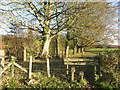SU8188 : Stile near Woodend House by Des Blenkinsopp