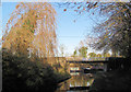 SP9213 : Winter view of Bridge No 1 on the Wendover Arm by Chris Reynolds