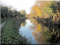 SP9213 : Wintertime reflections in the Wendover Arm by Chris Reynolds