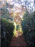 SP3177 : Footpath across Hearsall golf course by E Gammie