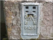 SO2813 : Ordnance Survey Flush Bracket S1289 by Peter Wood