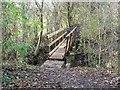 SK4134 : Footbridge over an un-named stream by Ian Calderwood