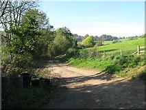 SO8808 : Down Hill to Slad - Painswick, Gloucestershire by Martin Richard Phelan