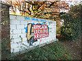 TQ1477 : Polish Graffiti in Osterley Park by Des Blenkinsopp