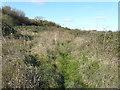 TR3262 : Site of former railway junction by John Baker