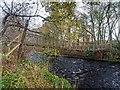 NH7947 : Suspension Footbridge by valenta