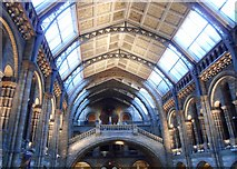 TQ2679 : The Hintze Hall in the Natural History Museum by Richard Sutcliffe