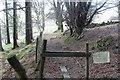 SO1902 : Footpath, edge of Graig Fawr by M J Roscoe