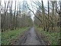 SE3703 : Trans Pennine / Dove Valley Trail by Christine Johnstone
