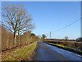 SP6430 : Lane towards Tingewick by Robin Webster