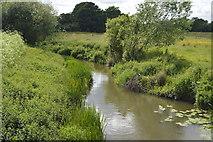 TQ5145 : River Eden at Vexour Bridge by N Chadwick