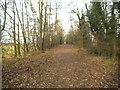 SO8694 : Leafy Railway Path by Gordon Griffiths