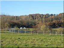 TQ4476 : Looking towards Woodlands Farm by Marathon