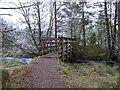 NH9919 : Footbridge over the Duack Burn by valenta
