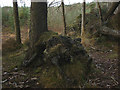 SD3492 : 'Wild Boar Clearing', a sculpture at Grizedale Forest (3) by Karl and Ali