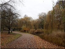 SE6250 : Near Spring Lane Bridge by DS Pugh