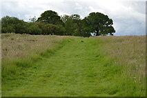 TQ5247 : Footpath to Charcott by N Chadwick