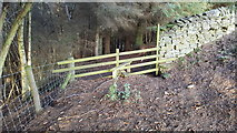NY9449 : Stile on footpath between Gibraltar Banks and Priestburn by Clive Nicholson