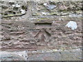 SJ4657 : Ordnance Survey Cut Mark by Peter Wood