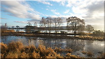 NH5447 : Shoreline of the River Beauly by Julian Paren