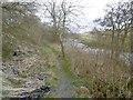 NS6126 : River Ayr Way by Richard Webb