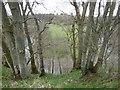 NS5726 : A sharp meander, River Ayr by Richard Webb