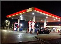 TQ1983 : Esso petrol station, Park Royal by David Howard