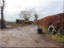 ST0218 : Redgate Lane by Roger Cornfoot