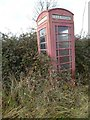 SO9231 : A neglected telephone box by Philip Halling