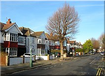 TQ2704 : 38-46, Welbeck Avenue, Aldrington, Hove by Simon Carey