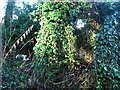 TM3090 : Ivy-clad remains of a toilet block by Evelyn Simak