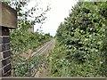 SJ8485 : Railway at Heald Green by Gerald England