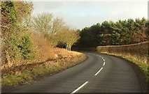 SE3564 : Road near Moorhouses by Derek Harper
